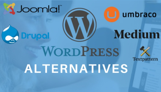 WordPress Alternative Options