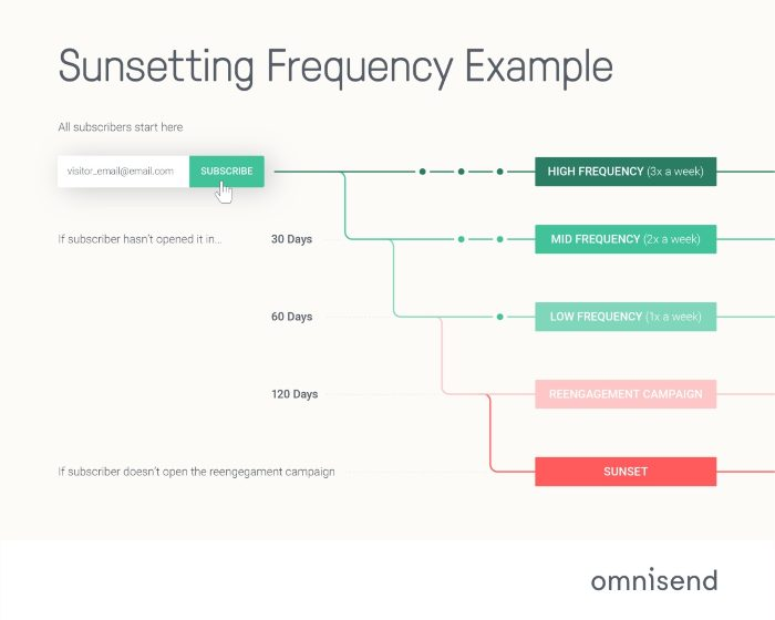 Email Subscriber Sunsetting Frequency Example